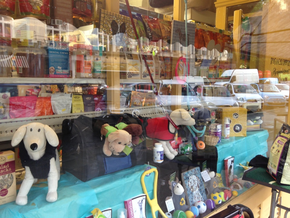 PET SHOP  WINDOW, PRIMROSE HILL.   © 2013 iLovePrimroseHill.com, all rights reserved.