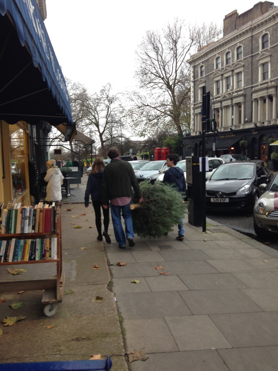 TAKING HOME THE CHRISTMAS TREE.   © 2013 iLovePrimroseHill.com, all rights reserved.