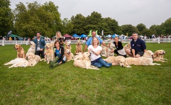 THE GORGEOUS AND TALENTED SGRS DISPLAY TEAM WITH (L-R) MATT JOHNSON, COMPERE ANNABEL GILES, ASHLEY JAMES, MARC THE VET, PUPAID'S REBECCA WELLER, RACHEL RILEY AND PUPAID'S STUART VERNON photo Julia Claxton.