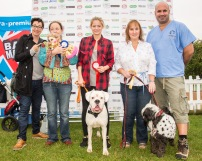 PUPAID 2014photo Julia Claxton.