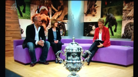 AT CRUFTS: MARC WAS INTERVIED ON THE PUPAID CAMPAIGN BY CLARE BALDING FOR MORE4'S TV COVERAGE.
