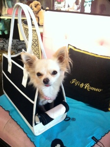 CHANEL SHOPOING AT HER FAVOURITE BOUTIQUE, FIFI AND ROMEO IN BEVERLY HILLS
