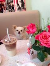 CHANEL ENJOYING A TEA-DATE AT HER FAVOURITE CAFE, THE PRIMROSE BAKERY