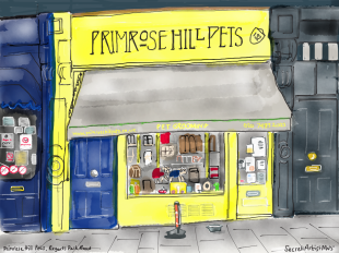 PRIMROSE HILL PETS BY THE SECRET ARTIST
